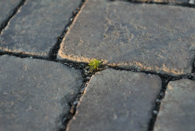 Learn how to create a paver patio in a weekend   Swanson-Realty.com